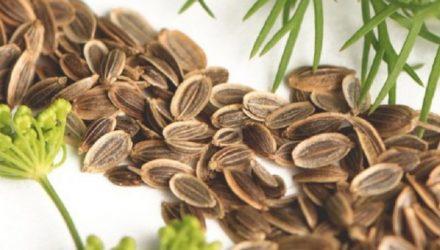 Чтобы забыть о давлении нужно взять горсть семян укропа. Через неделю будете здоровы!