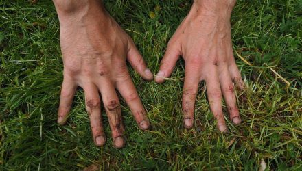 Как очистить руки и ногти после работы в огороде. Совет начинающим дачникам.