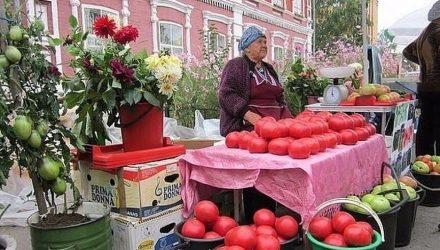 Волшебный бальзам для роста помидор