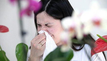 Аллергия пройдет 100%. ПРОВЕРЕНО!