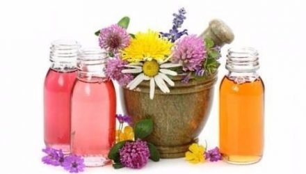 Базовые эфирные масла и травы для добавления в шампунь